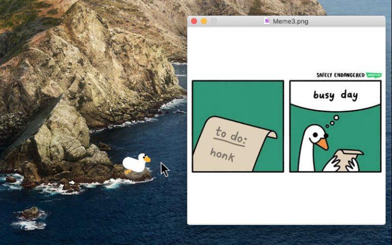 Как выйти или полностью удалить Desktop Goose на Mac