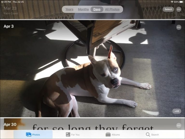 Как отключить автовоспроизведение видео и фото на iPadOS