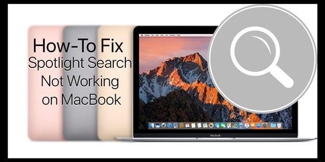 Поиск Spotlight не работает на MacBook, как исправить